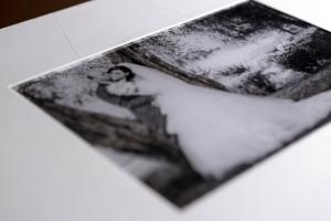 album-fine-art-23